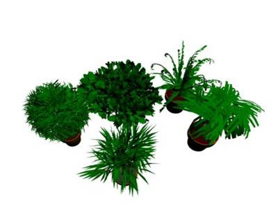 shrubs and plants max 3d dwg model for autocad designs cad