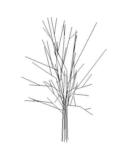 Tree 3D RFA Model
