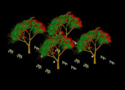 Poinciana Trees 3d Dwg Model For Autocad Designs Cad