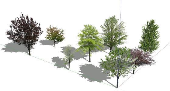 2d Watercolor Trees – Migliori Pagine da Colorare