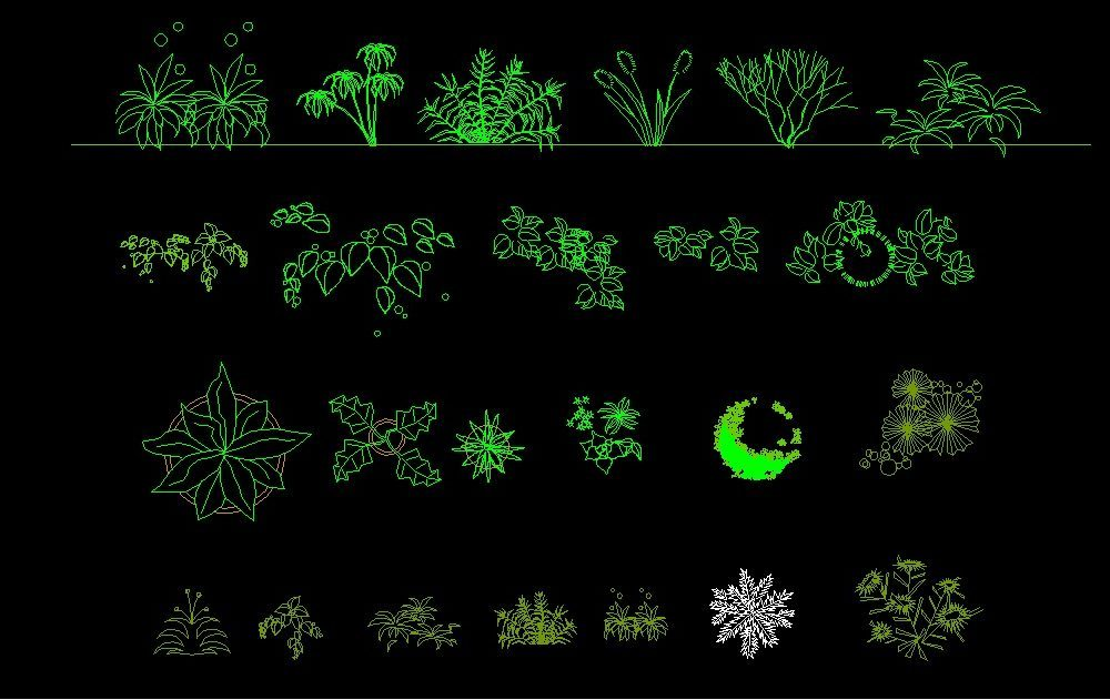 Shrubs trees plants top view plan and elevation 2d dwg for Plante 3d dwg