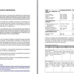Model Contingency Plan DOC Plan Word Document