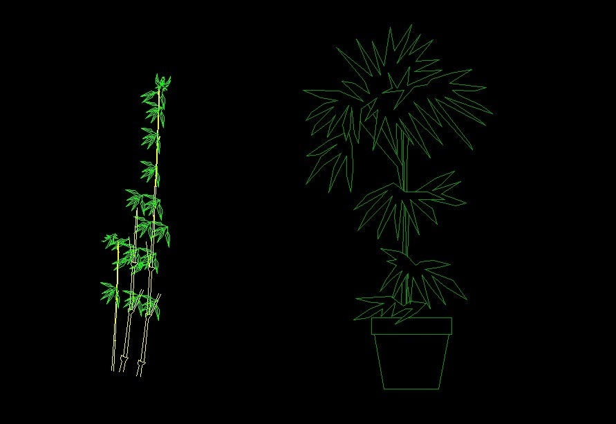 Bamboo Tree Parlor Palm Plant Front View Elevation 2d Dwg
