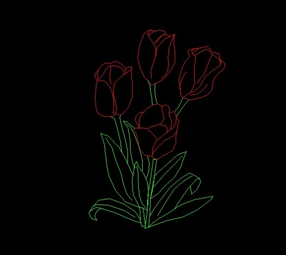 Tulip Flowers Plant Side View Elevation 2D DWG Block For