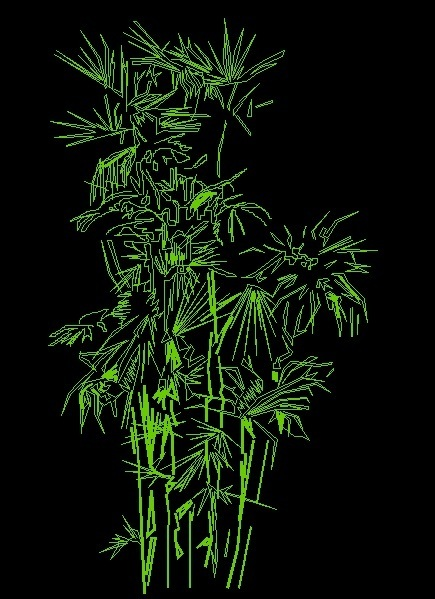 Front Elevation Autocad 2d : Bamboo tree plant front view elevation d dwg block for